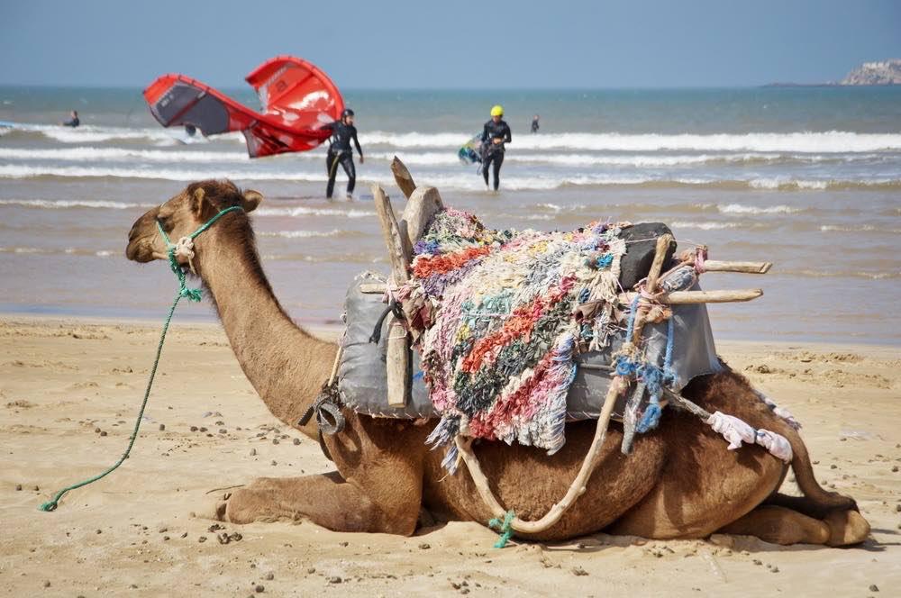 Kitesurfing morocco
